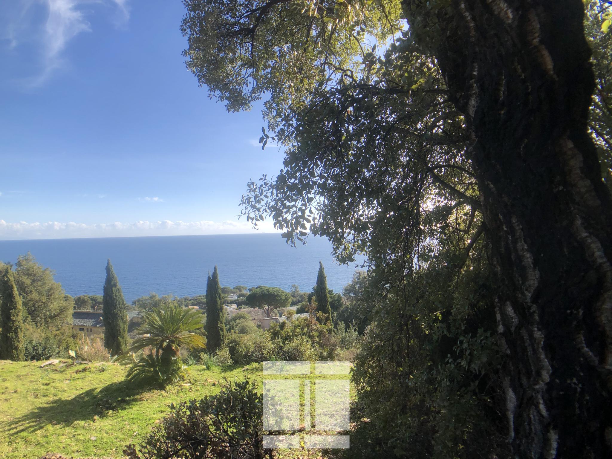 Terrain constructible vue mer à San Martino di Lota